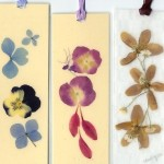 bookmarks 1