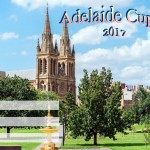 Adelaide Cup - 2017 - fillable