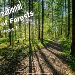 Int. Day of Forests - 2017 - no date