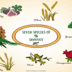Shavuot - 2017 - no date