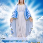 Assumption of Mary - 2017 - fillable