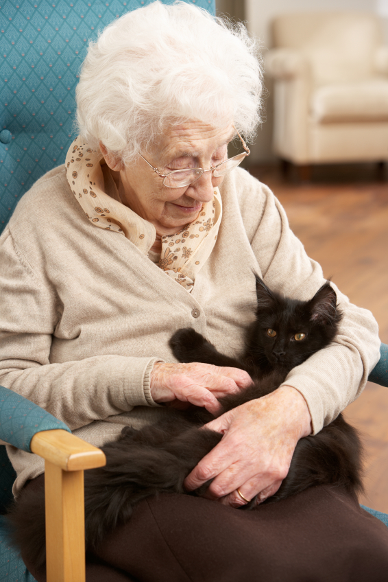 quality of care and aging in How to pay for assisted living costs  living care depends on the level of care needed, and the quality of the assisted  local area agency for aging.