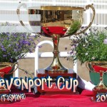 devonport-cup-2017-fillable
