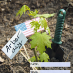 Arbor Day (US) - 2018 - fillable