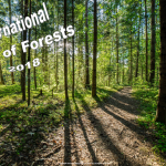 Int Day of Forests - 2018 - no date