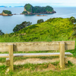 a wooden bench in the grass at cathedral cove,hahei, coromandel,new zealand