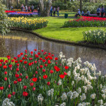 Keukenhof Garden, Lisse - The Netherlands