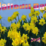 Daffodil Day - 2018 - no date