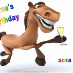 Horses Birthday - 2018 - no date