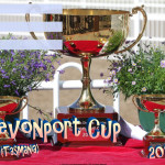 Devonport Cup - 2019 - fillable