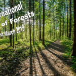 Int Day of Forests - 2019
