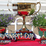 Event Poster - Devonport Cup - 2020 - fillable