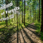Event Poster - Int. Day of Forests - 2020