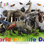 Event Poster - World Wildlife day - 2020 - no date