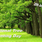 Event Poster -Ntional Tree Planting Day - 2020