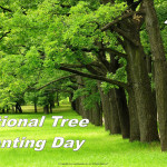 Event Poster -Ntional Tree Planting Day - 2020 - no date