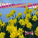 Event Poster - Daffodil Day - 2020 - no date