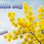 Event Poster - Wattle Day - 2020 - no date